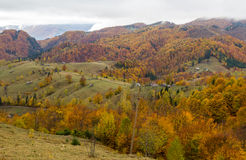 Panorama d'automne Photographie stock