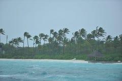 Jour pluvieux dans le tropique Photographie stock