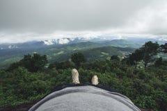 Jour pluvieux de forêt de tourisme de nature Photographie stock libre de droits