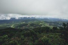 Jour pluvieux de forêt de tourisme de nature Photos libres de droits