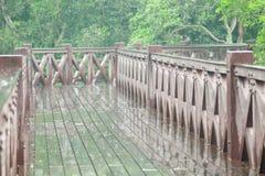 Jour pluvieux et passerelle en bois Photographie stock libre de droits