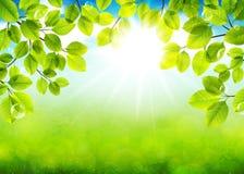 Jour solaire Image libre de droits
