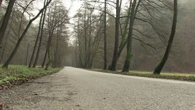 Jour sombre en parc national Maninska Tiesnava, Slovaquie banque de vidéos