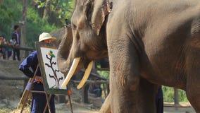 Jour thaïlandais national d'éléphant clips vidéos