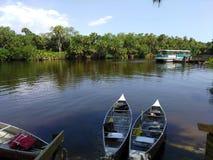 Jour tranquille sur la rivière de Myakka, Venise la Floride Photographie stock