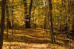 Journal d'automne Photographie stock libre de droits
