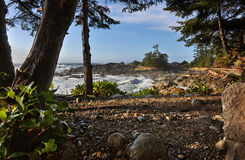 Journal d'Ucluelet photographie stock