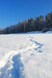 Journal dans la neige Images stock