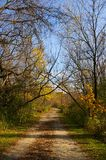 Journal de couleurs de saison d'automne Image stock