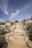 Journal de hausse de désert Photographie stock libre de droits