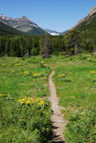 Journal de hausse de montagne Image stock