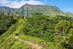 Journal de Kuilau Ridge Images libres de droits