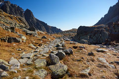 Journal de montagne Photos libres de droits