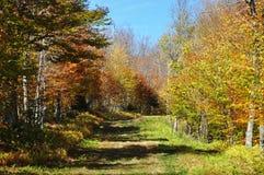 Journal de montagne en Nouvelle Angleterre Photos libres de droits