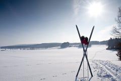 Journal de ski de pays en travers avec le ski Photos stock