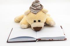 Journal intime avec l'ours de chariot Photographie stock libre de droits