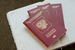 Journal intime de passeports Photographie stock libre de droits