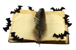 Journal intime de sorcière d'isolement Photographie stock libre de droits