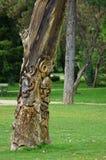 Journal med träskulptur Royaltyfri Foto