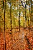Journal tranquille d'automne Photo libre de droits