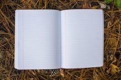 Journal vide sur la terre Image stock