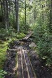 Journalbana i de Adirondack bergen av den New York staten royaltyfri fotografi