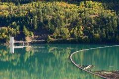 Journalbang på snickaren Lake i British Columbia, Kanada 02 Arkivbilder