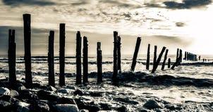 journaler Fotografering för Bildbyråer