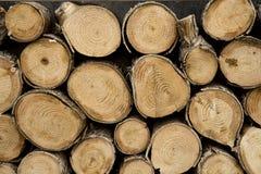 Journaler av trä Arkivbilder
