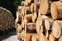 journaler pile trä Arkivfoton