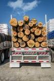 journaler som transporterar lastbilen Fotografering för Bildbyråer