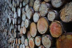 journaler staplat trä royaltyfria foton