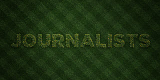 JOURNALISTS - fresh Grass letters with flowers and dandelions - 3D rendered royalty free stock image Stock Photography