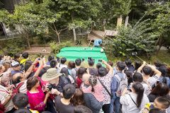 Journalists and visitors at Chengdu Research Base of Giant Panda Breeding. Stock Photo