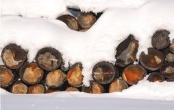 Journalvedtraven i den insnöade vintern lantlig platsvinter HDR Royaltyfria Foton