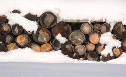 Journalvedtraven i den insnöade vintern lantlig platsvinter HDR Arkivbilder