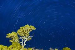 Journaux d'étoile Photo libre de droits