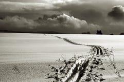 Journaux de neige Photographie stock libre de droits