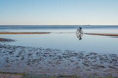 Bike ride along the bay on a summer evening