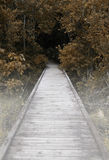 The Journey 2. This is an image of an old walkway in Merritt Island National Wildlife Refuge Stock Images