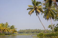 Journey through the backwaters of Kerela Royalty Free Stock Photo