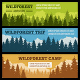 Journey, camping vector banners set with pine tree silhouettes. Poster or card with evergreen forest or park illustration