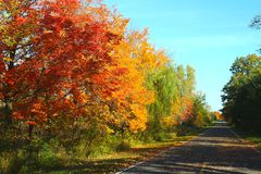 Journey Down a Fall Country Road. I searched for autumn this year in Michigan, and I found it everywhere I went in this rural country.  Fall foliage line the Stock Image