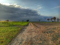 Journey fields again. Green trees road clouds stock image