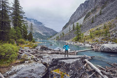 Journey on foot through the mountain valleys. The beauty of wildlife. Altai, the road to Shavlinsky lakes. Hike.  Royalty Free Stock Images