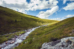 Journey on foot through the mountain valleys. The beauty of wildlife. Altai, the road to Shavlinsky lakes. Hike.  Royalty Free Stock Photo