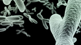 Journey through many chromosomes on a black background HD video stock footage