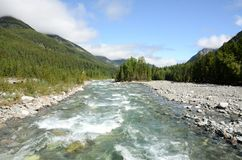 River in the mountains of the eastern Sayan Royalty Free Stock Images