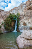 The journey through reserves Ein Gedi. The journey through the national park and reserves Ein Gedi. Adorable waterfall among rocks parched desert Royalty Free Stock Photo
