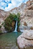 The journey through reserves Ein Gedi Royalty Free Stock Photo